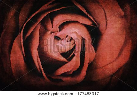 Digital watercolour of a red rose, with added texture to resemble an old paining. Romantic and nostalgic theme.