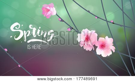 Apricot Branch. Japan Cherry. Branch with Blooming Flowers. Vector illustration. Card, Poster Flyer Spring