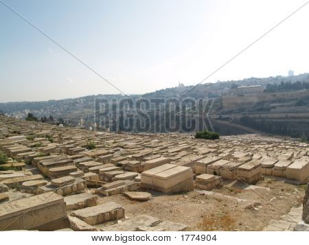 Old Cemetery On The Mountain Of Olives
