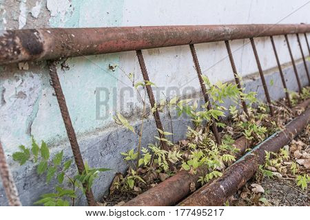 A rusty climbing ladder lies on the ground along the facade of a destroyed building