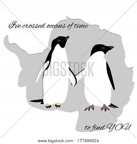 Postcard Penguins Adelie in love in Antarctica