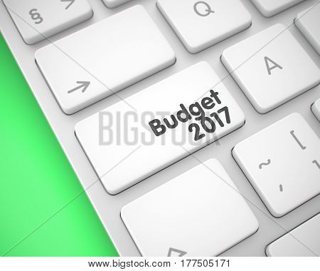 Online Service Concept with White Enter White Key on Keyboard: Budget 2017. Online Service Concept: Budget 2017 on the Modernized Keyboard lying on Green Background. 3D.