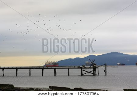 Evening stroll along Kits Beach, English Bay, Vancouver, British Columbia, Canada