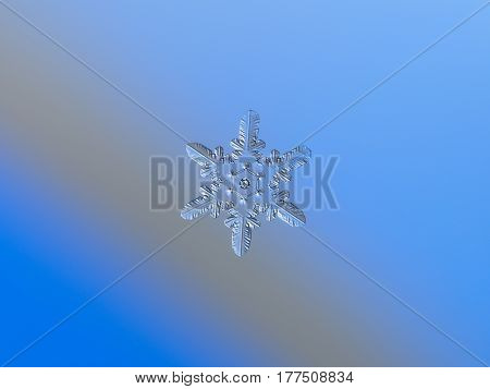 Real snowflake glittering on smooth blue - gray gradient background. This is small snow crystal of star plate type with glossy, relief surface and unusual pattern of six elements around central hexagon.