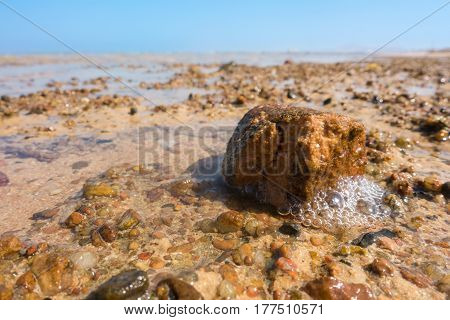 Closeup of little stone on the beach at low tide in the Red sea, Egypt, summer vacation concept
