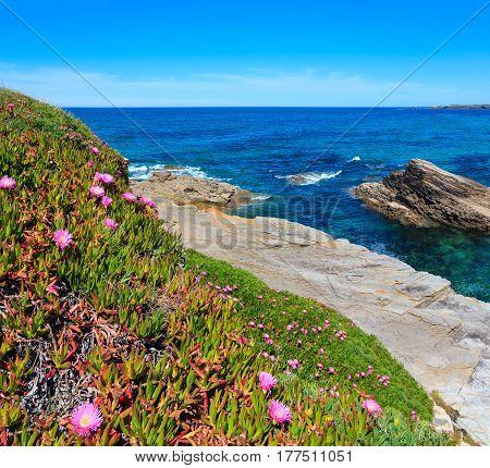 Atlantic Blossoming Coastline (spain).