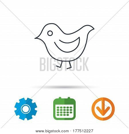 Bird icon. Chick with beak sign. Fowl with wings symbol. Calendar, cogwheel and download arrow signs. Colored flat web icons. Vector
