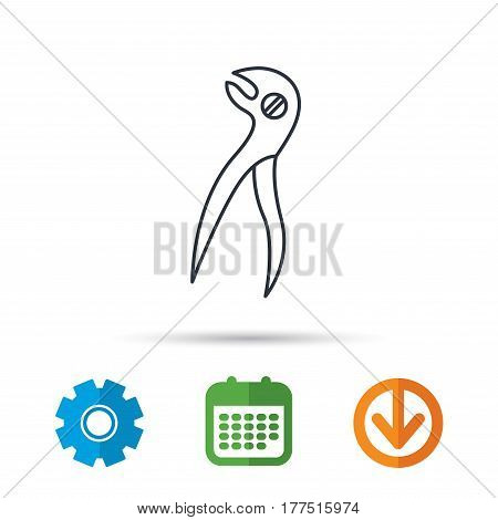Dental pliers icon. Stomatological forceps tool sign. Calendar, cogwheel and download arrow signs. Colored flat web icons. Vector