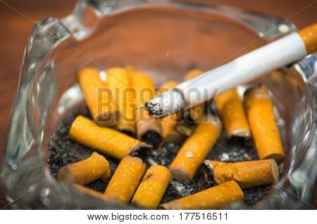Cigarettes and tobacco lying inside and around glass ash tray on wooden surface, seen from above, anti smoking concept.