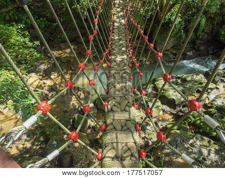Rope Bridg