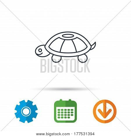 Turtle icon. Tortoise sign. Tortoiseshell symbol. Calendar, cogwheel and download arrow signs. Colored flat web icons. Vector