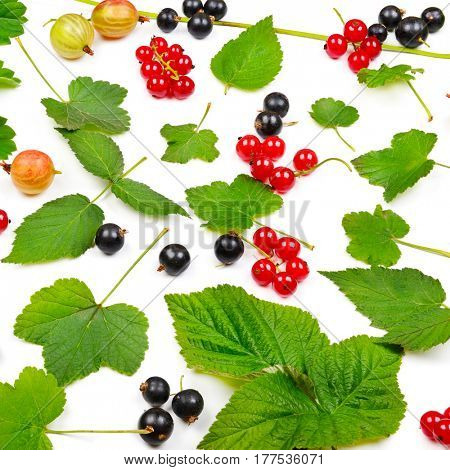 Black and red currants, gooseberries isolated on white background. Top view.
