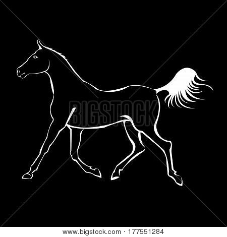 vector, horse, animal, illustration, mustang, mammal, design, wild, stallion