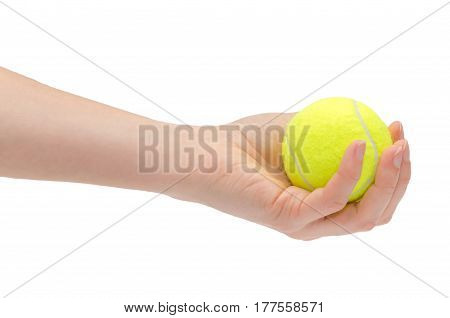 Hand Of Young Girl Holding Tennis Ball.