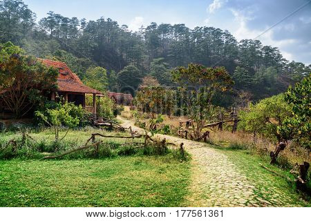 Rustic Houses With Tile Roofs Among Green Woods
