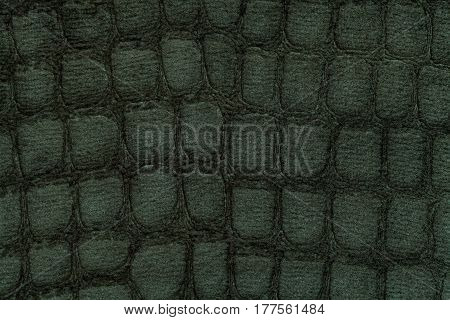 Dark green background from a soft upholstery textile material closeup. Fabric with pattern imitating crocodile skin.. Textured backdrop.