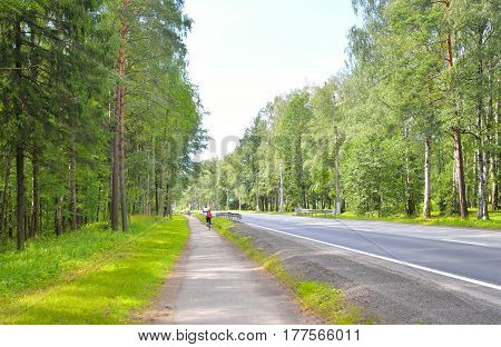 Primorskoe shosse in the forest on the outskirts of St. Petersburg Russia.