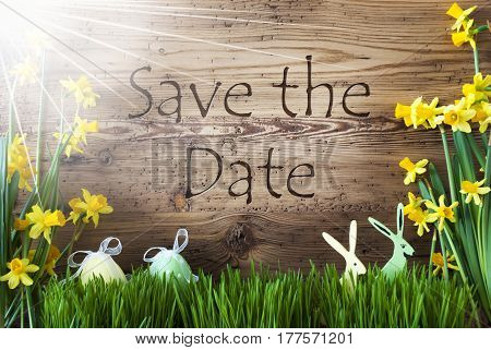 Wooden Background With English Text Save The Date. Easter Decoration Like Easter Eggs And Easter Bunny. Sunny Yellow Spring Flower Narcisssus With Gras. Card For Seasons Greetings