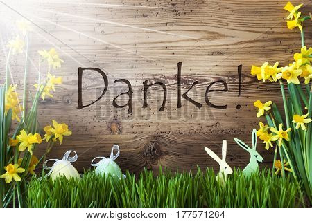Wooden Background With German Text Danke Means Thank You. Easter Decoration Like Easter Eggs And Easter Bunny. Sunny Yellow Spring Flower Narcisssus With Gras. Card For Seasons Greetings