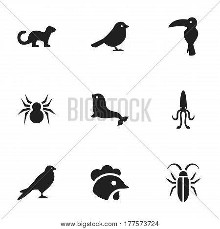 Set Of 9 Editable Nature Icons. Includes Symbols Such As Octopus, Arachind, Eagle And More. Can Be Used For Web, Mobile, UI And Infographic Design.