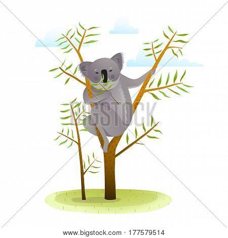 Cute koala in nature eating. White background vector illustration