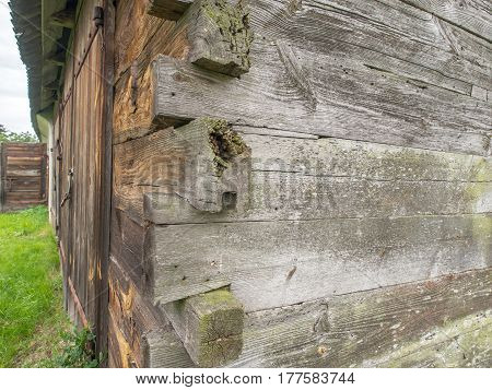 Corner nail free connection of wooden log walls in Podlasie