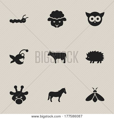 Set Of 9 Editable Nature Icons. Includes Symbols Such As Fish, Larva, Honey And More. Can Be Used For Web, Mobile, UI And Infographic Design.