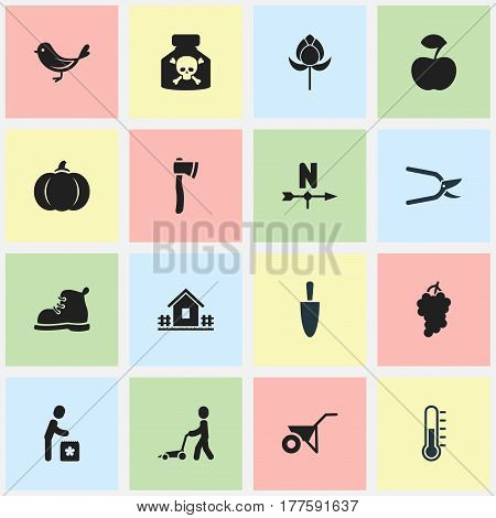Set Of 16 Editable Garden Icons. Includes Symbols Such As Tomahawk , Handcart, Footwear. Can Be Used For Web, Mobile, UI And Infographic Design.