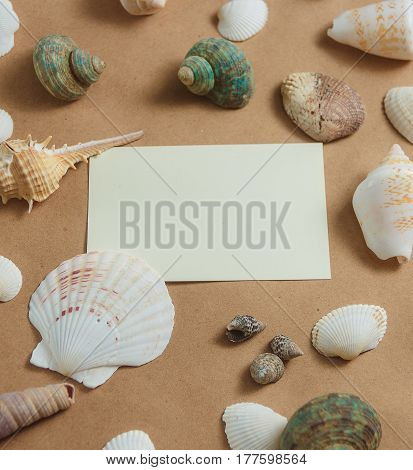 many seashells with blank card on light background. flat view