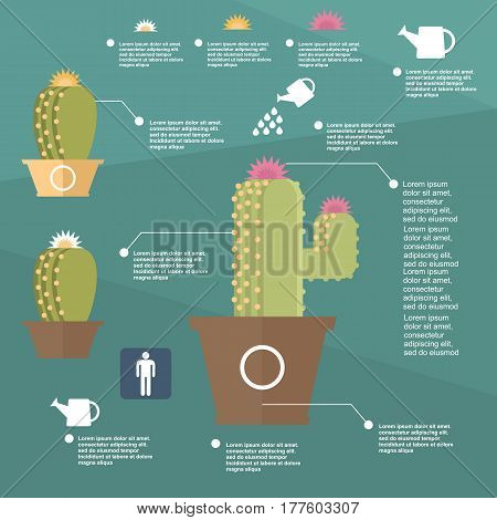 isolated soil grow needles green floral white mexican business flower barbed sign vector thorns symbol template elements ecology graphic blossom drawing flat icon illustration biology collection design color plant set cactus desert background turquoise wa