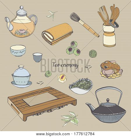 Set tea ceremony with various traditional tools, Teapot, bowls, gaiwan. Colorful hand drawn illustration.