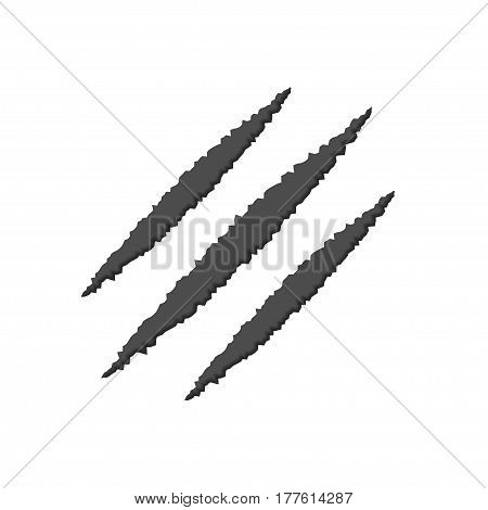 Animal monster claw scratches on white paper background