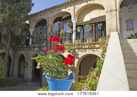 Pot, With The Typical Carnation Cordoba, In An Andalusian Patio. Andalusia Region, Spain.