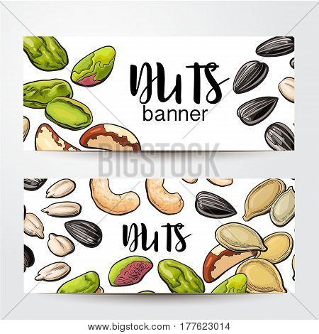 Banners with cashew, sunflower, pumpkin seeds, pistachio, Brazil nuts and place for text, sketch vector illustration on white background. Banner, label design, decoration element with nuts and seeds