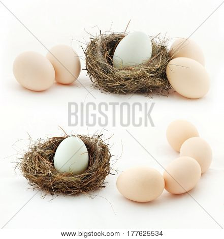 Composition with eggs in the nest and outside of the nest