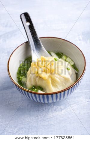 Dumpling as close-up in a Bowl
