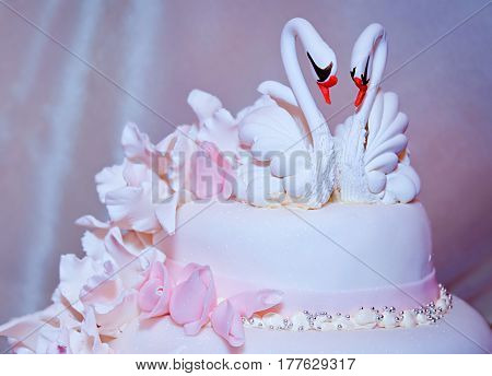 Wedding cake with swans. In pink colors with flowers