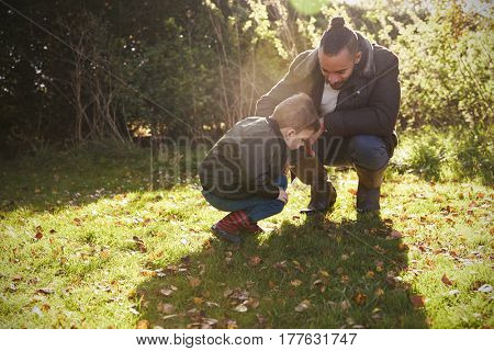 Boy And Father Playing With Autumn Leaves in Garden