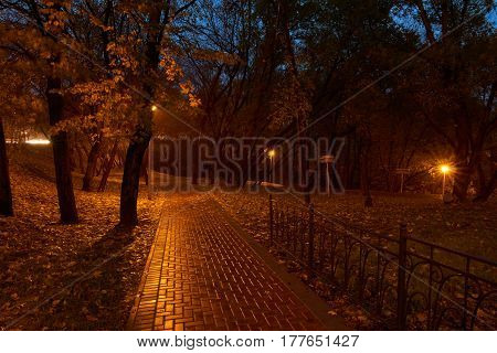 Night in the park and street lights. Park near Yauza river in Babushkinskiy district Moscow. Park signs read