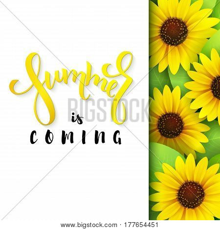vector illustration of hand lettering poster - summer is coming with paper sheet on a background of blooming sunflower.