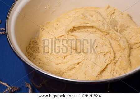 Dough For Bread On Yeast