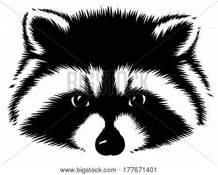 black and white linear draw raccoon illustration