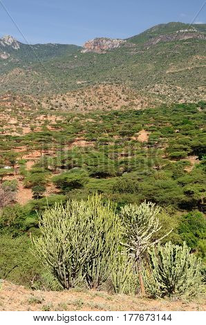 Kenya Mountain landscapes in surroundings of the South Horr village of Samburu people on the way to the Turkana lake