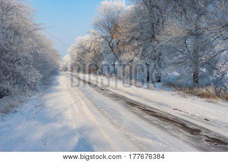 Winter landscape with slippery country road leading to Novo-Nikolaevka village in Dnepropetrovskaya oblast Ukraine
