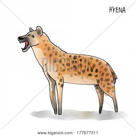 Hyena Watecolor Animal illustration set