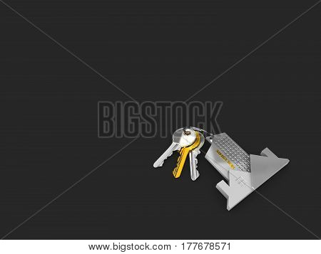 House key on a house shaped keychain. 3d illustration, isolated black