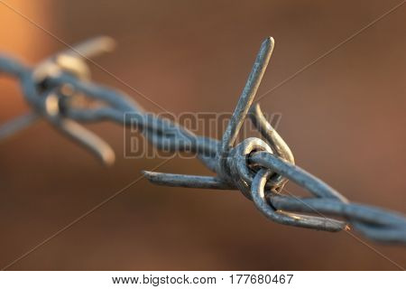 Detail of barbwire in bright morning sun