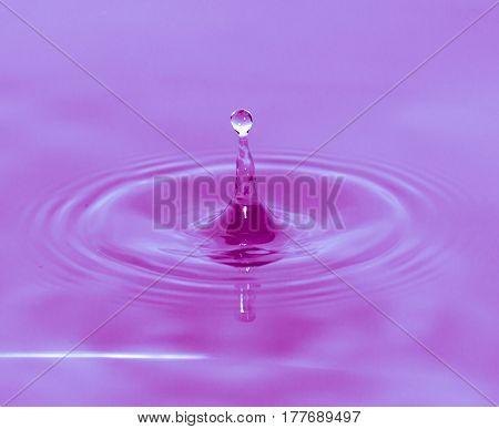 a drop of water falls in a purple water. macro