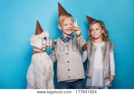 Little beautiful girl and handsome boy with dog celebrate birthday. Friendship. Family. Studio portrait over blue background