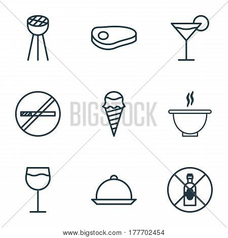 Set Of 9 Meal Icons. Includes Bowl, Steak, Wineglass And Other Symbols. Beautiful Design Elements.